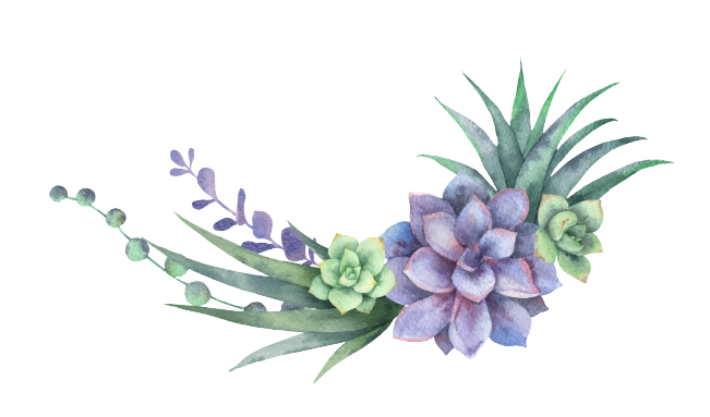 Fairy Succulent Creations